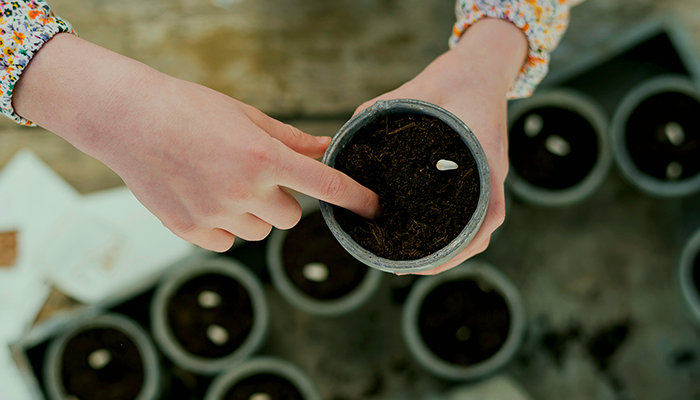 Woman testing new soil for plant